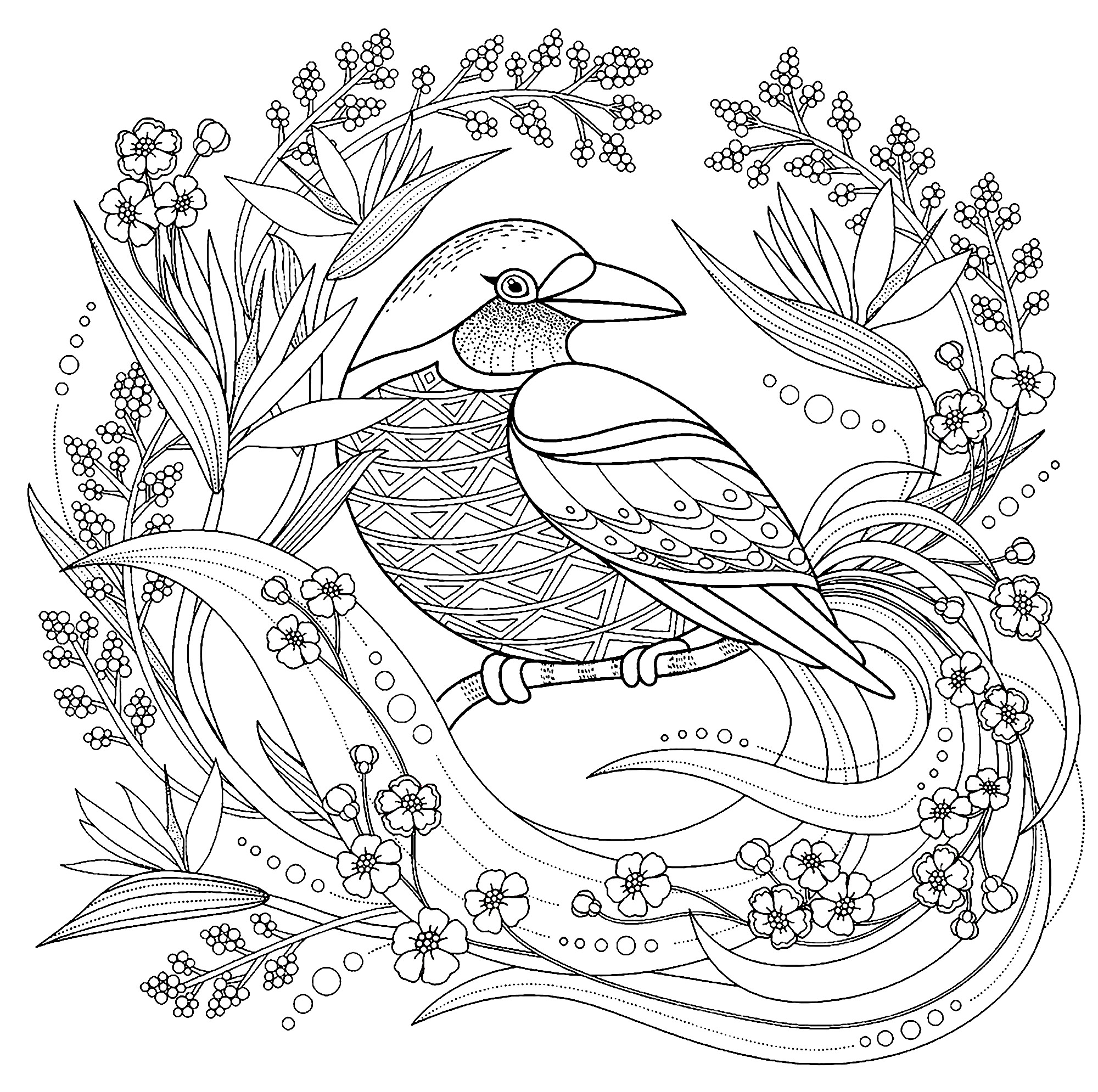 coloring pictures birds bird with floral elements birds adult coloring pages birds pictures coloring