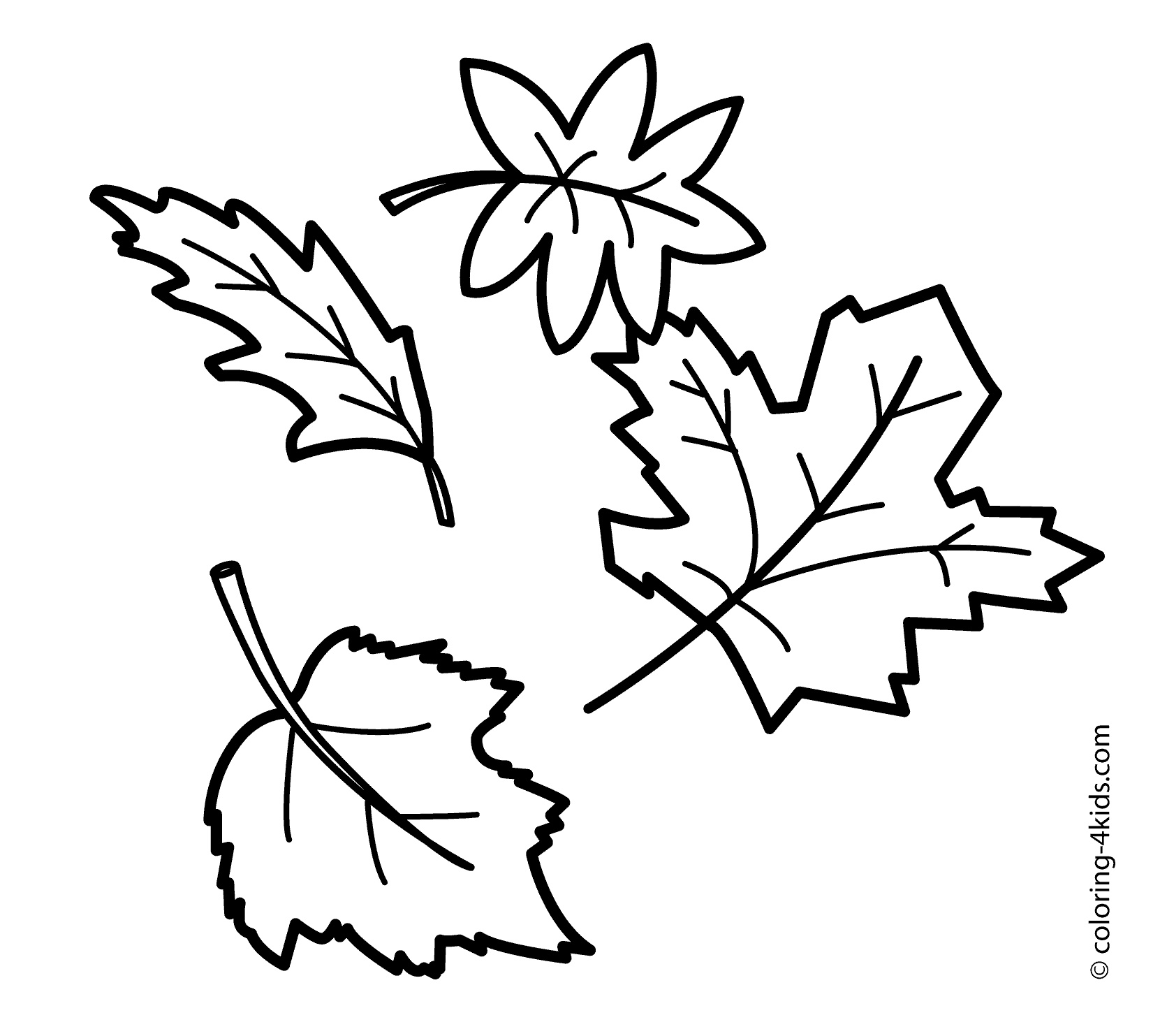 coloring pictures leaves a lot of maple autumn leaf coloring page netart pictures coloring leaves