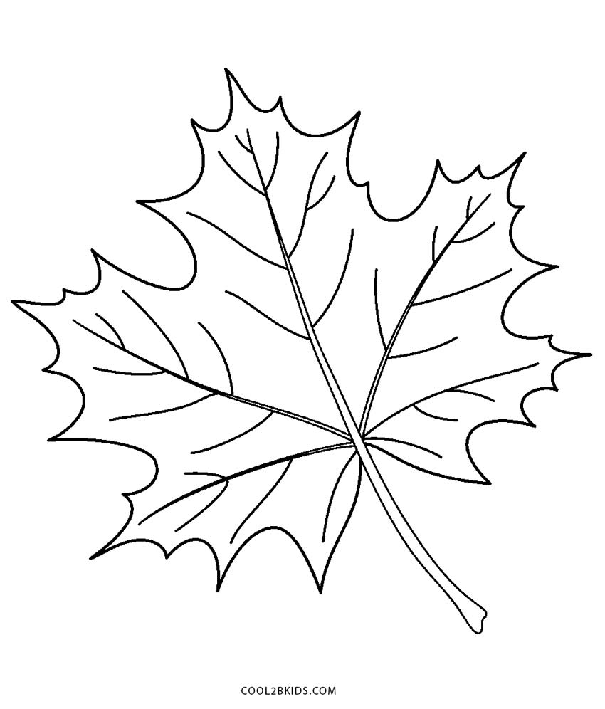 coloring pictures leaves easy preschool fall leaves coloring pages leaves pictures coloring
