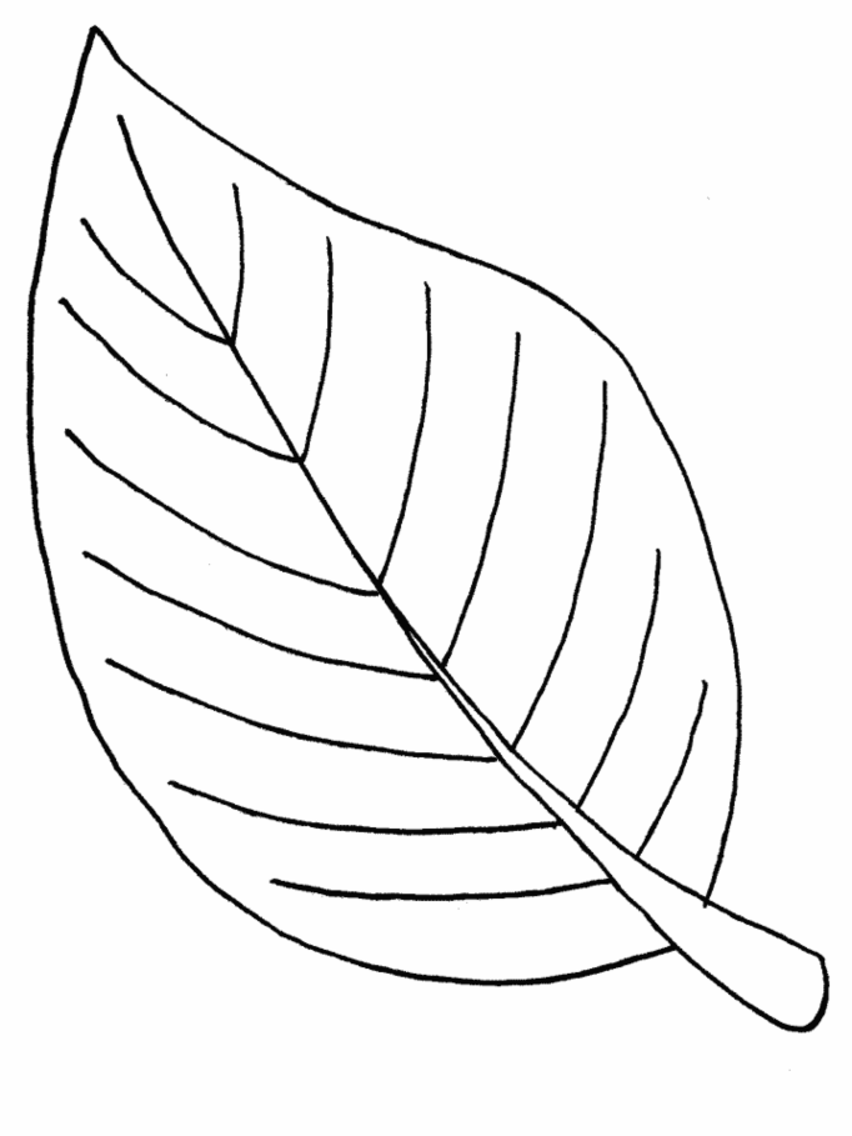 coloring pictures leaves maple leaf is the autumn leaves coloring page kids play coloring leaves pictures
