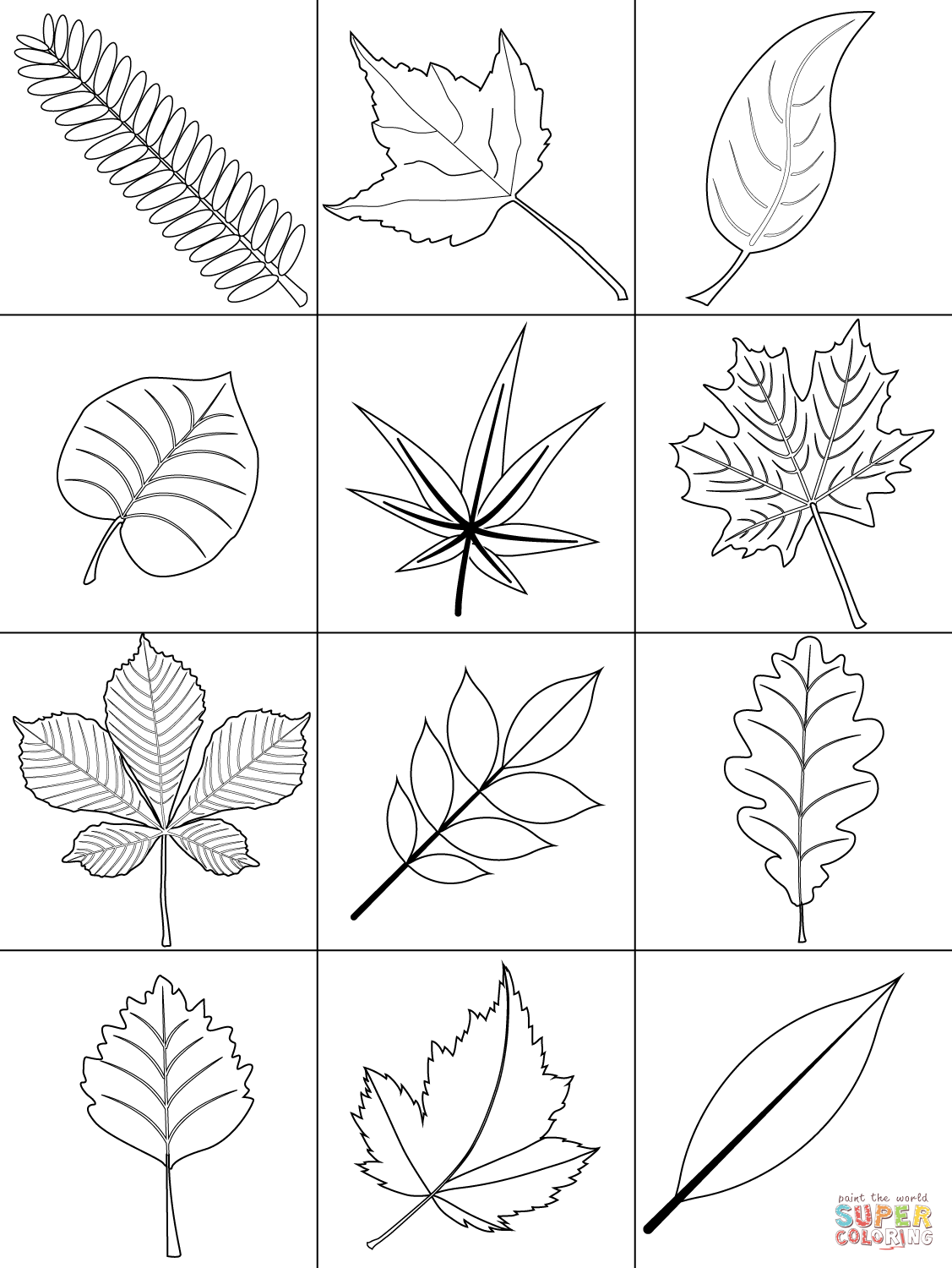 coloring pictures leaves tree leaves coloring pages for kids to print for free leaves pictures coloring