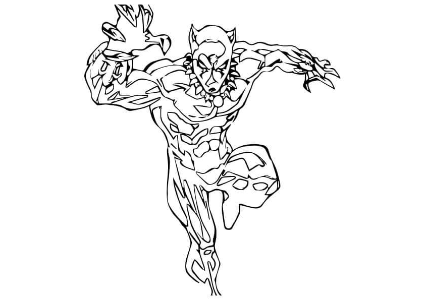 coloring pictures of panthers black panther coloring pages to print and color coloring pictures panthers of