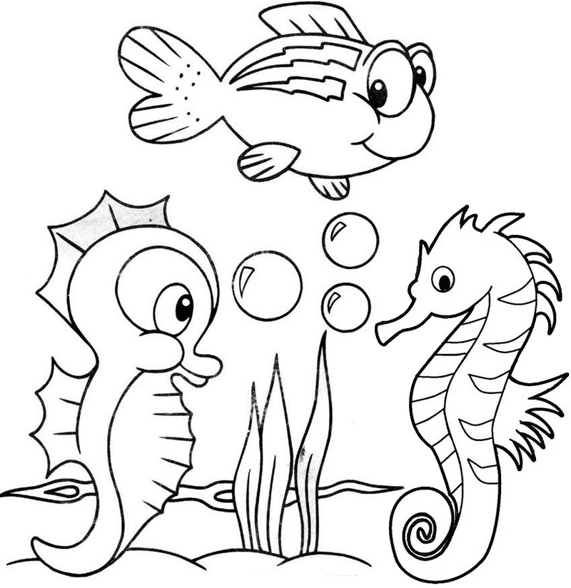 coloring pictures of sea animals cute baby seahorse coloring page pictures of sea animals coloring