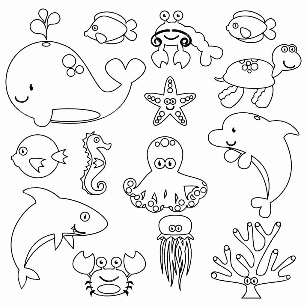 coloring pictures of sea animals ocean coloring pages to download and print for free sea animals of coloring pictures