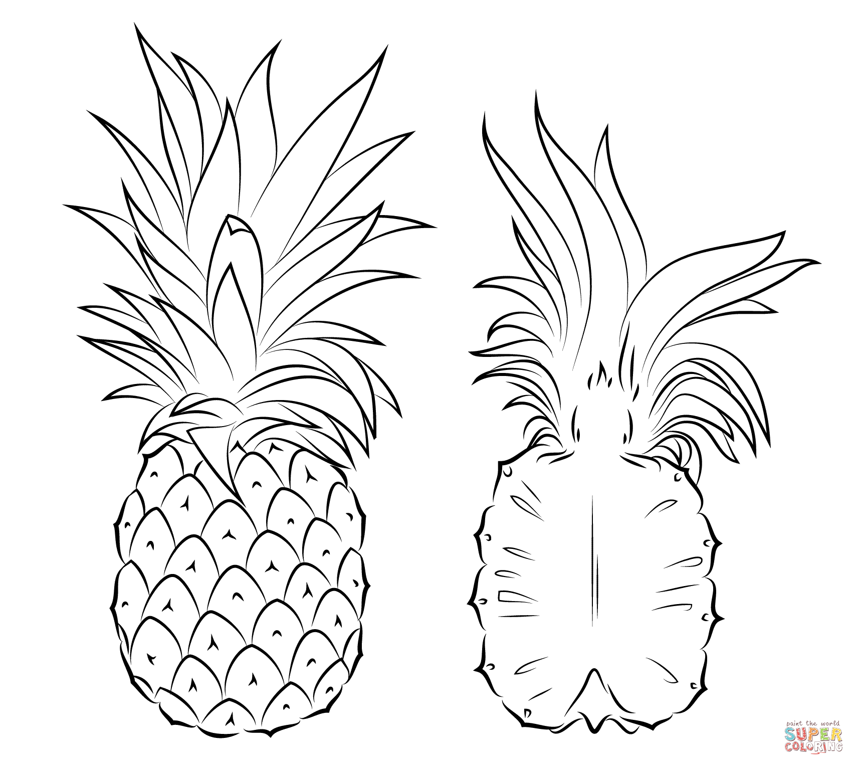 coloring pineapple clipart panda free clipart images pineapple coloring