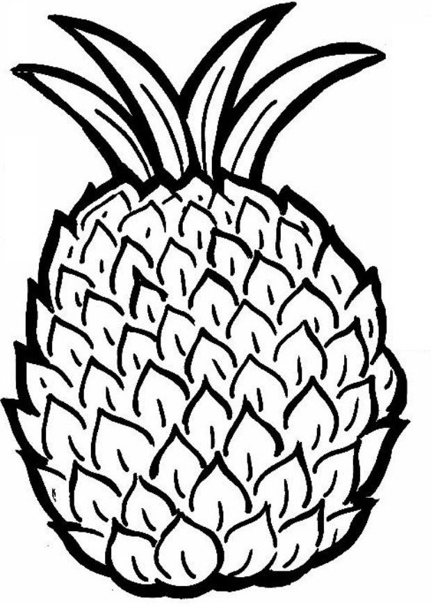 coloring pineapple pineapple coloring pages for kids coloringfile coloring pineapple