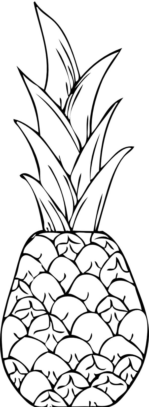 coloring pineapple pineapple coloring pages to download and print for free pineapple coloring