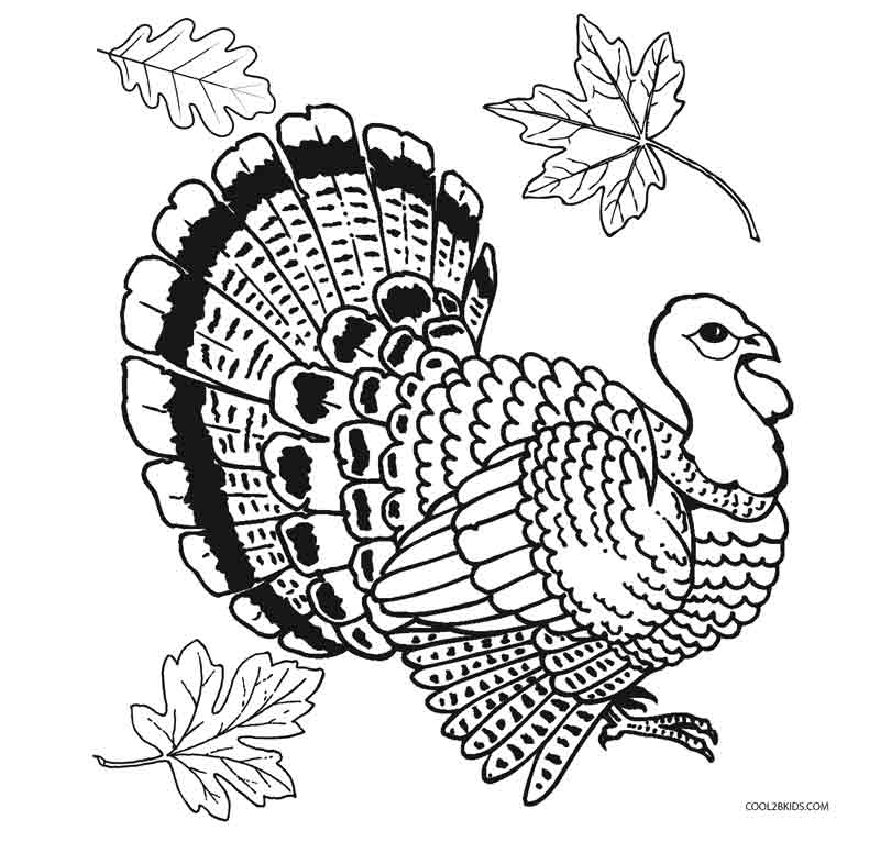 coloring printable turkey thanksgiving turkey coloring pages getcoloringpagescom turkey coloring printable