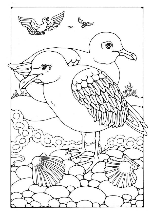 coloring sheet 4 coloring page coloring pages all cars 2 coloring home sheet coloring 4 coloring page
