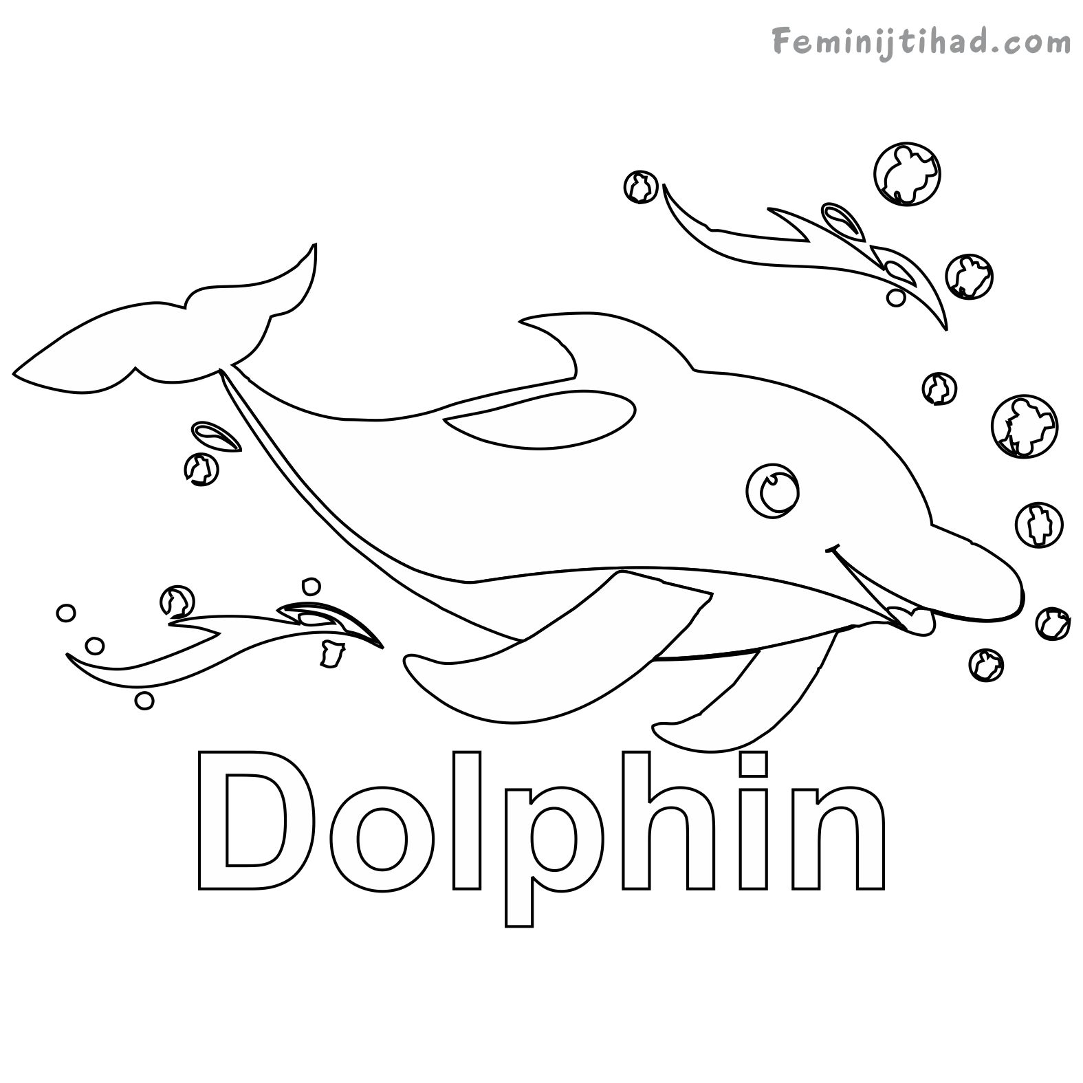 coloring sheet dolphin cute baby dolphin coloring pages at getcoloringscom sheet dolphin coloring