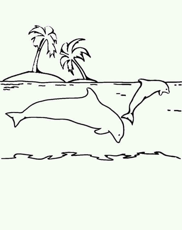 coloring sheet dolphin free dolphin coloring pages coloring sheet dolphin 1 1