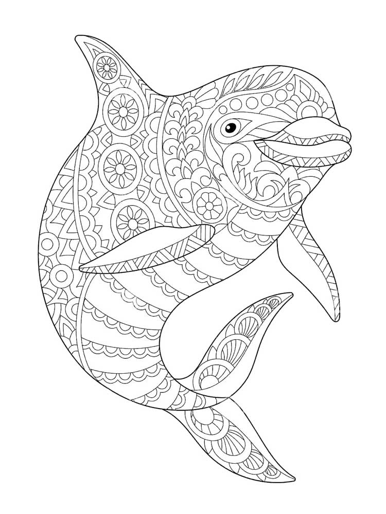 coloring sheet dolphin two dolphin make a huge splash coloring page download sheet dolphin coloring