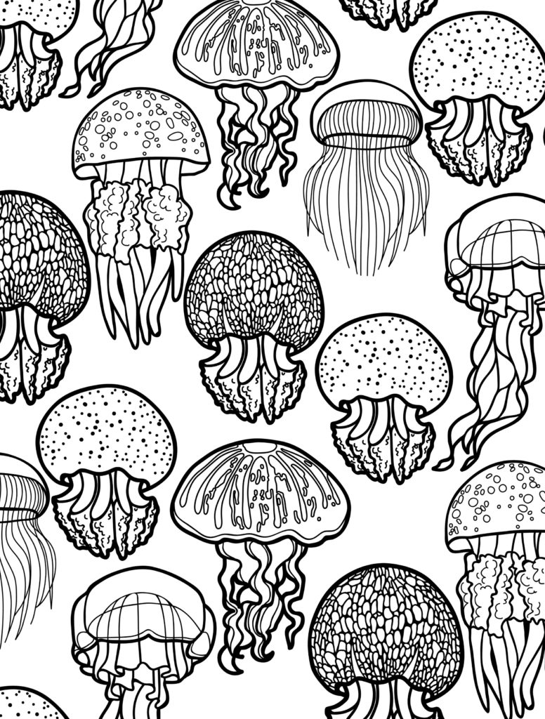 coloring sheet for adults owl coloring pages for adults free detailed owl coloring for adults sheet coloring