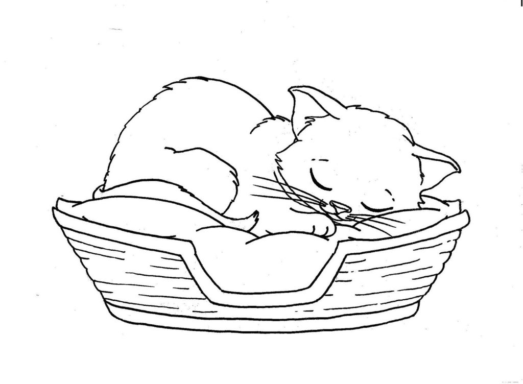 coloring sheet kitty sleep cat coloring pages best coloring pages for kids sheet kitty coloring