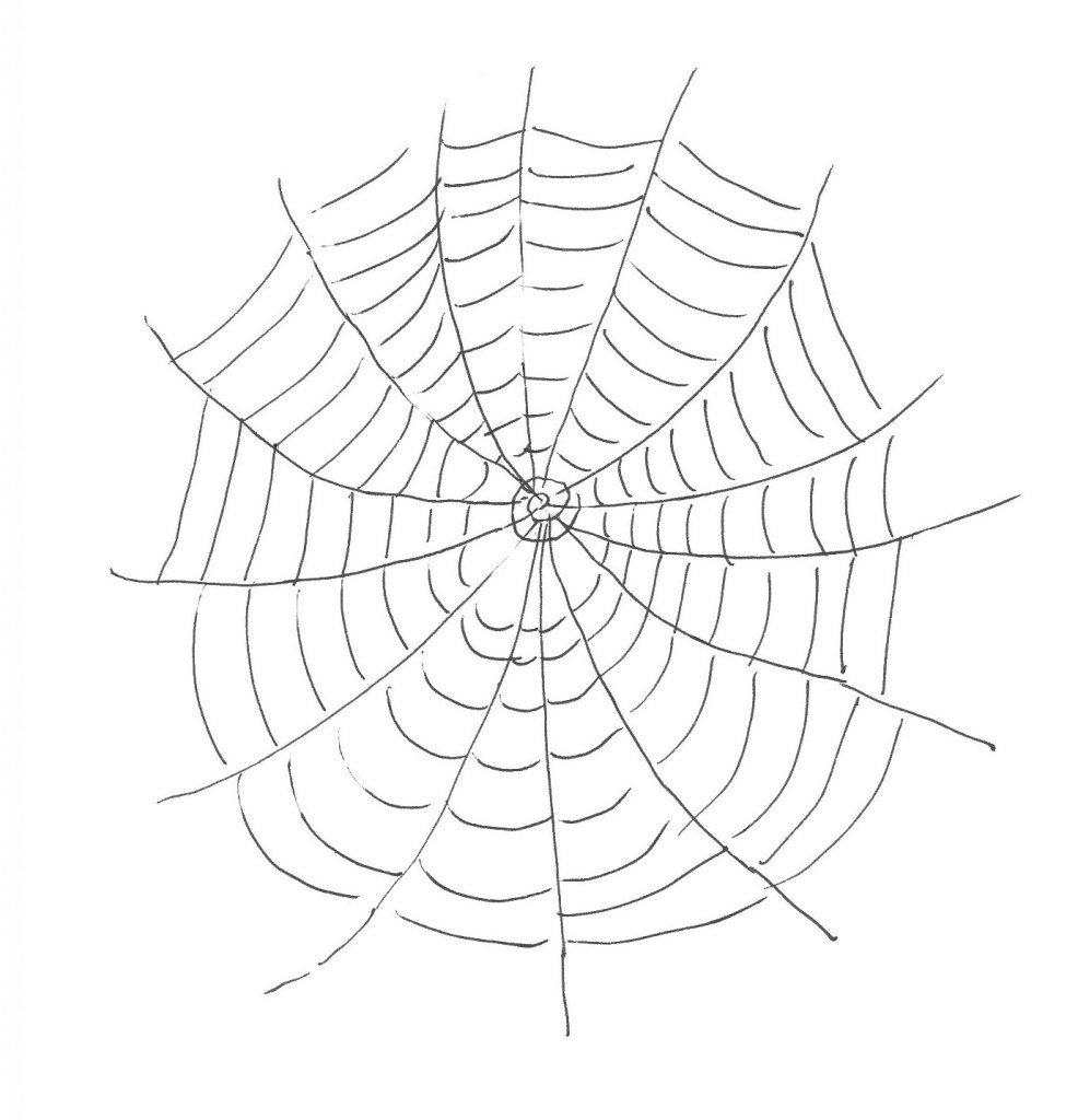 coloring sheet spider coloring pages raw a tarantula spider step 5 coloring page free spider pages coloring sheet spider coloring
