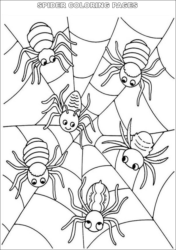 coloring sheet spider coloring pages spider coloring page free printable coloring pages coloring pages sheet spider coloring