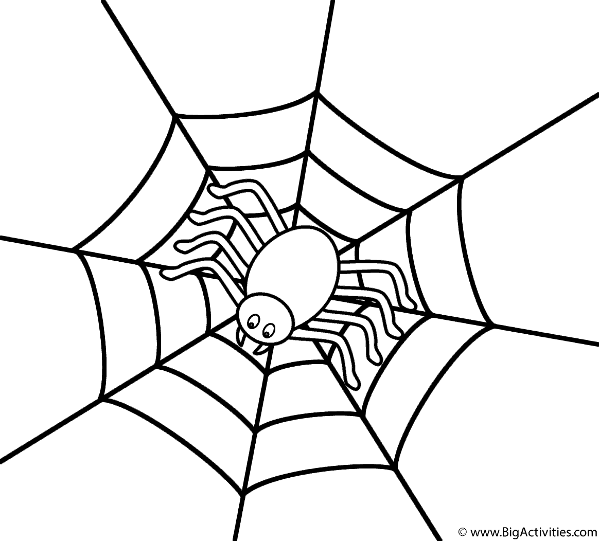 coloring sheet spider coloring pages spider web zentangle coloring page by pamela kennedy tpt spider pages sheet coloring coloring