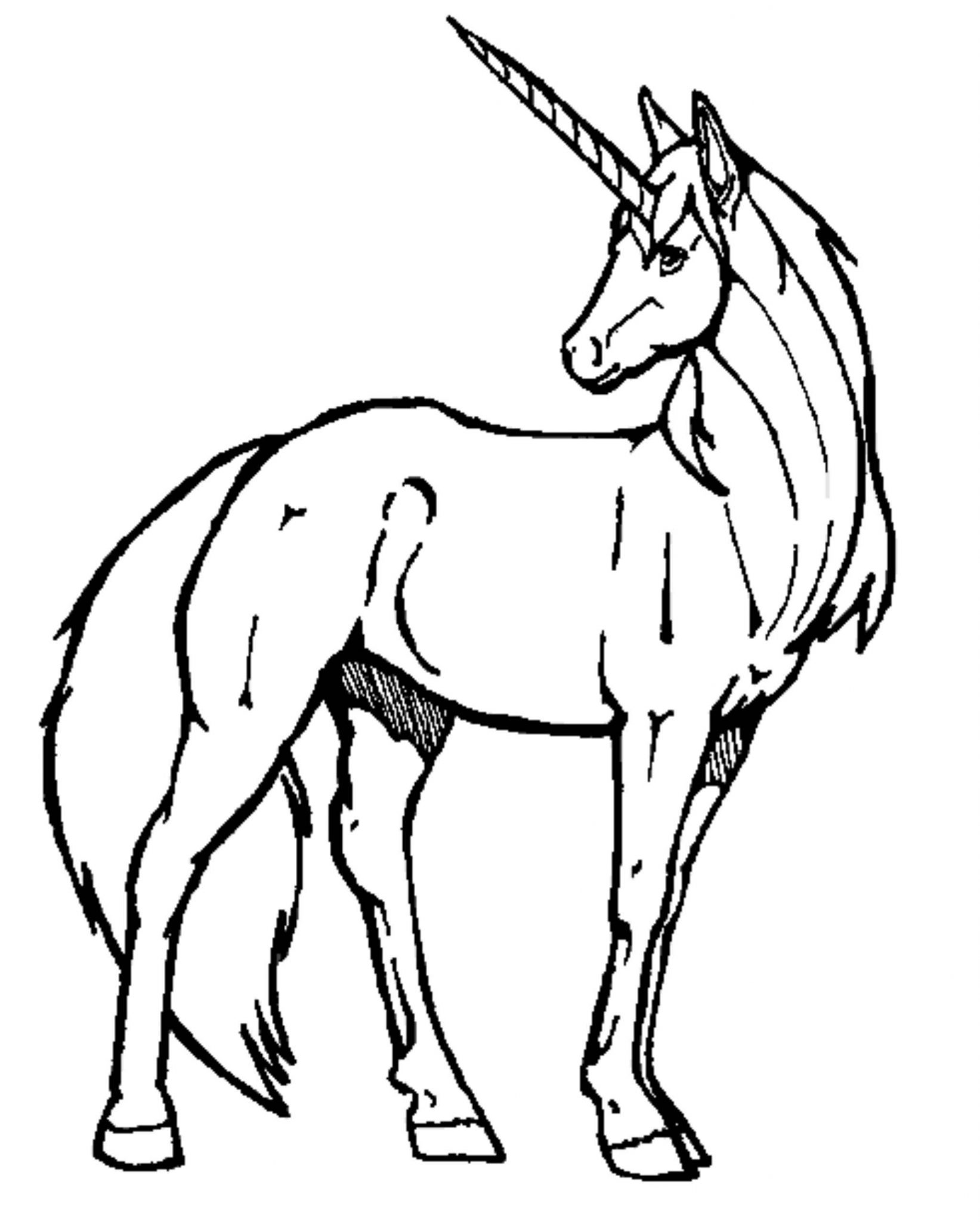 coloring unicorn kids drawing print download unicorn coloring pages for children coloring drawing unicorn kids