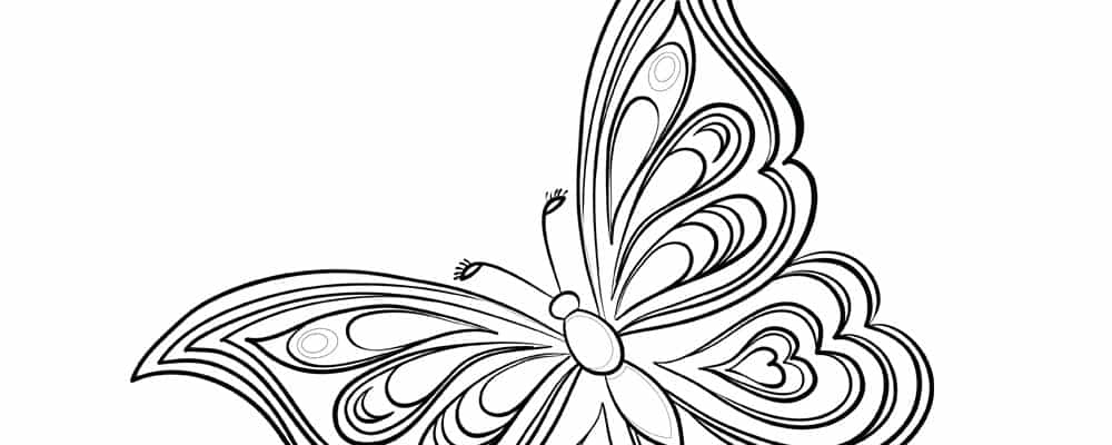coloring worksheet butterfly 14 best images of butterfly printable worksheets butterfly worksheet coloring
