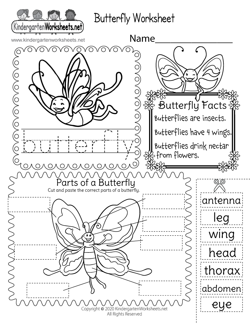 coloring worksheet butterfly a butterfly has wings worksheet twisty noodle butterfly worksheet coloring