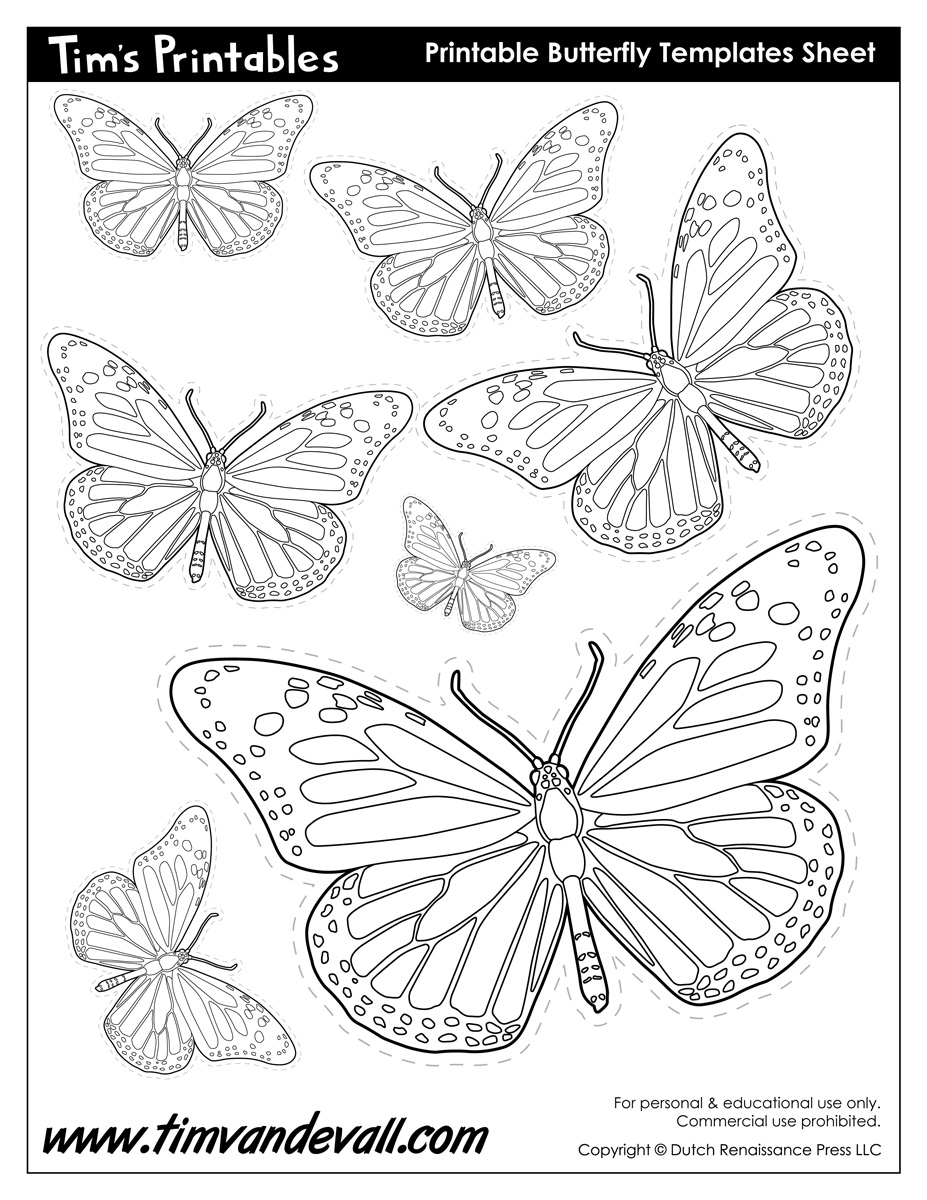 coloring worksheet butterfly butterfly coloring esl worksheet by philippachr worksheet coloring butterfly