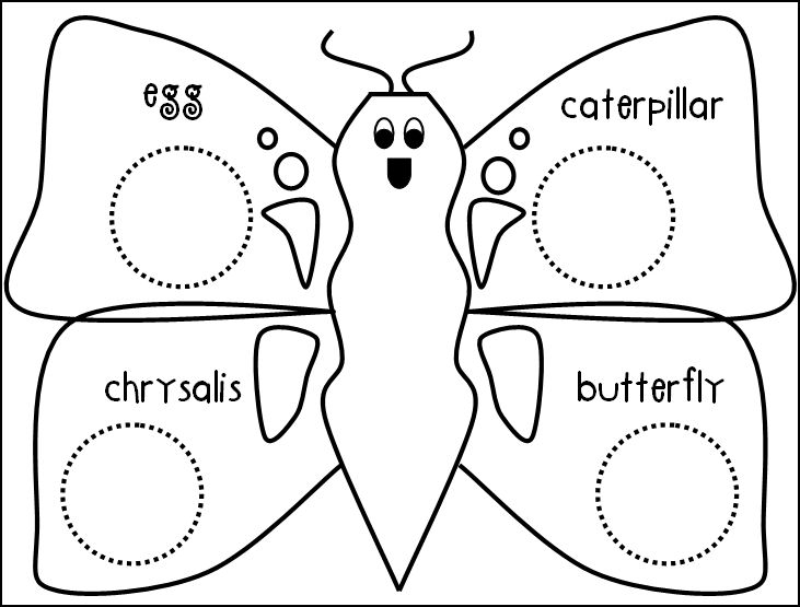coloring worksheet butterfly color the butterfly symmetrically worksheets coloring worksheet butterfly