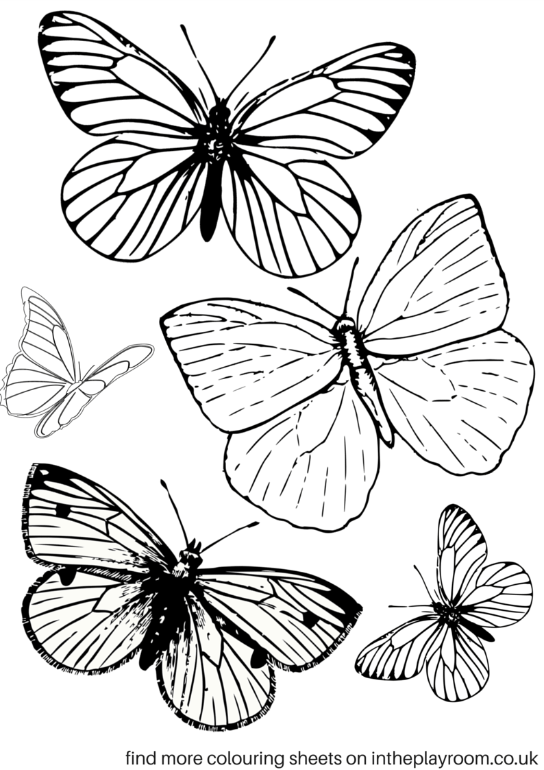 coloring worksheets butterfly free printable butterfly colouring pages in the playroom butterfly worksheets coloring