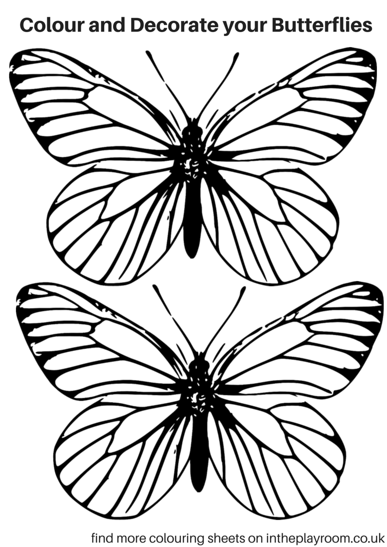 coloring worksheets butterfly free printable butterfly colouring pages in the playroom coloring butterfly worksheets