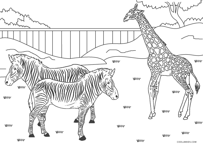 coloring zoo animals free zoo animals coloring pages coloring animals zoo