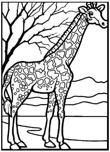 coloring zoo animals zoo animal coloring pages free download on clipartmag zoo animals coloring