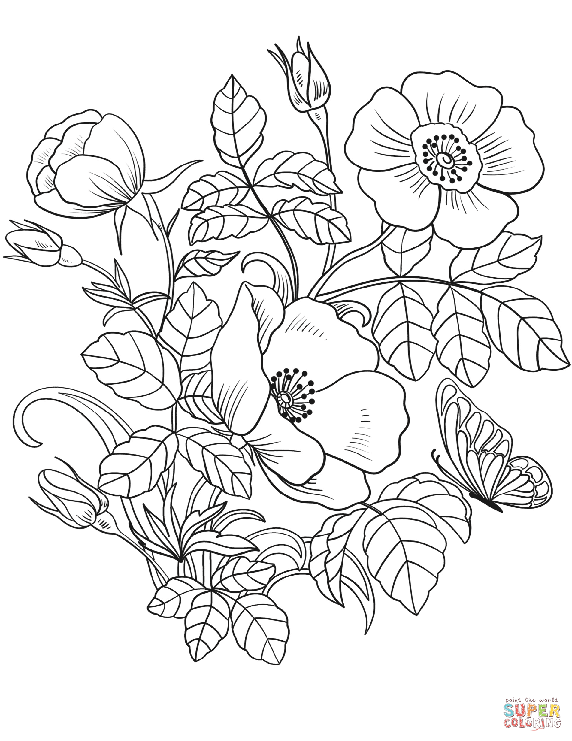 colouring pictures of plants spring flowers coloring page free printable coloring pages pictures colouring of plants