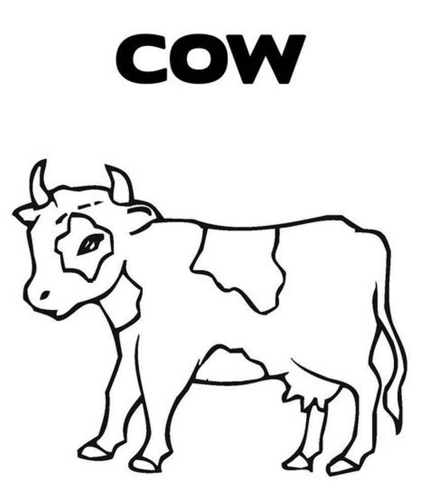 cow pictures to color cute cow animal coloring books for kids drawing to pictures cow color