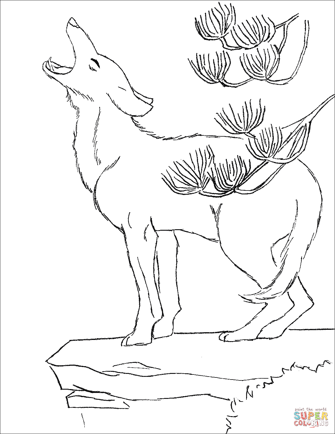 coyote coloring page download coyote coloring for free designlooter 2020 page coloring coyote