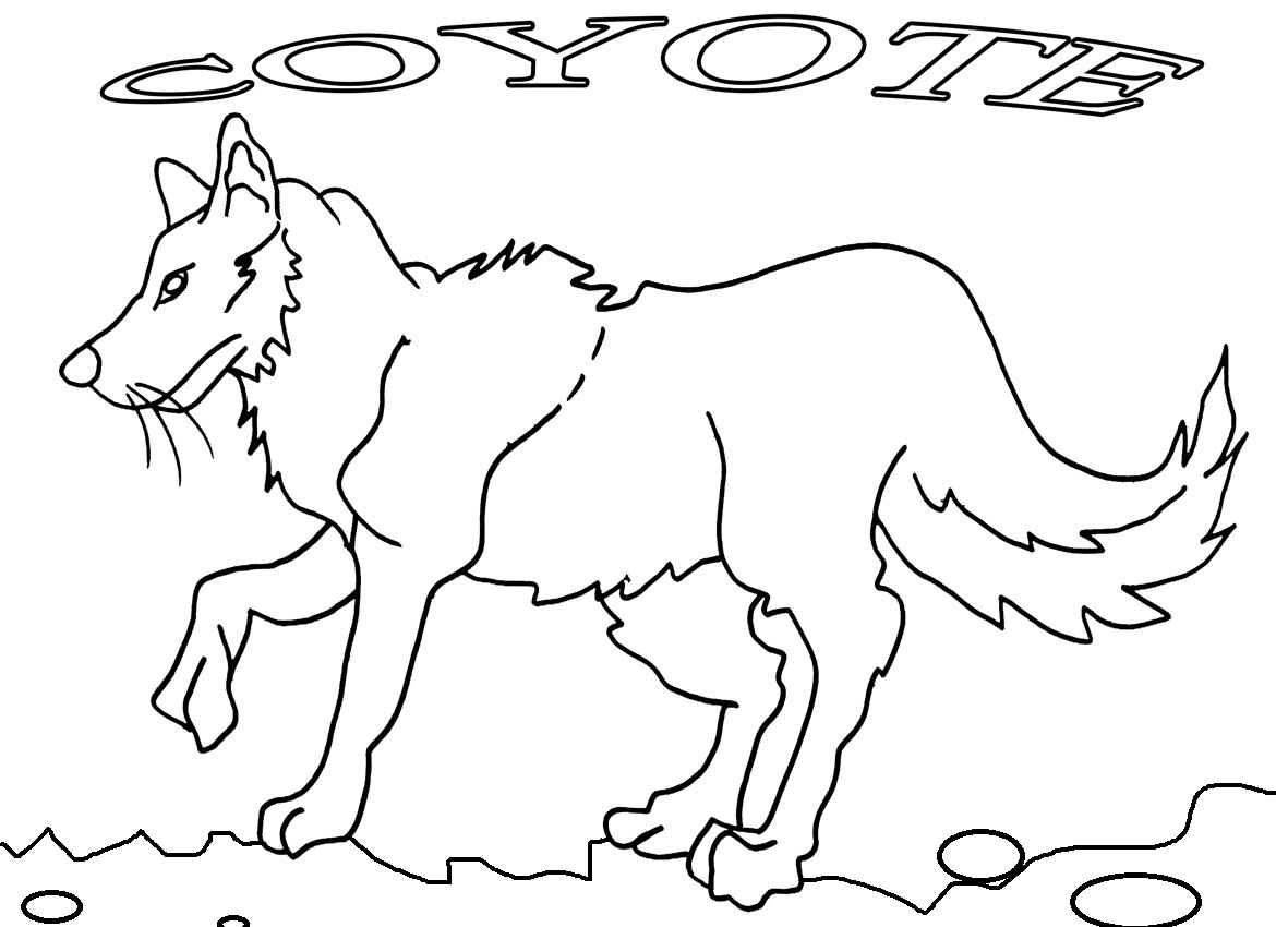 coyote coloring page free coyote coloring page coyote page coloring