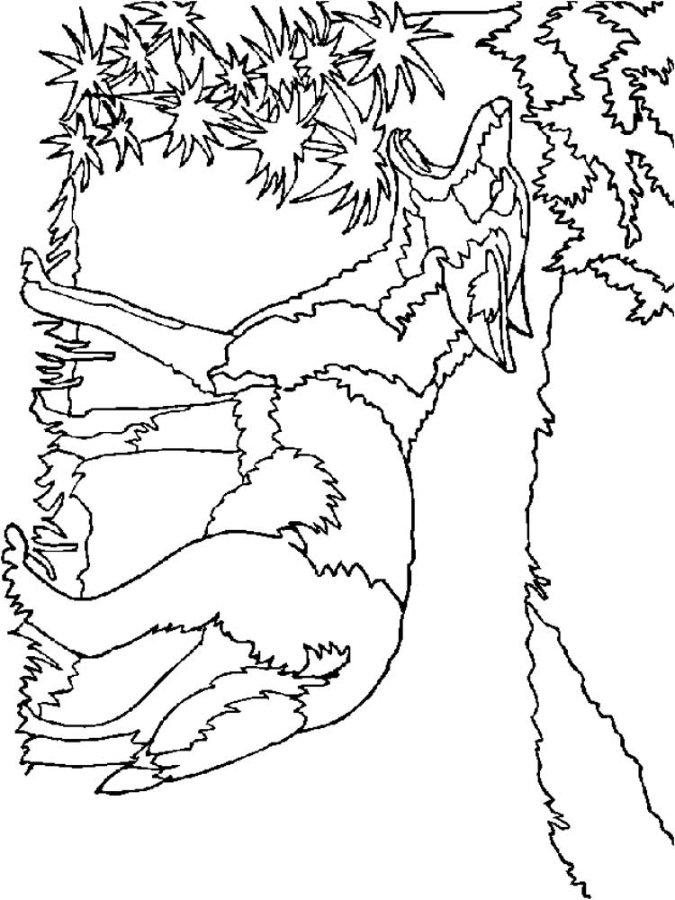 coyote coloring page free coyote coloring pages download and print coyote page coloring coyote 1 1