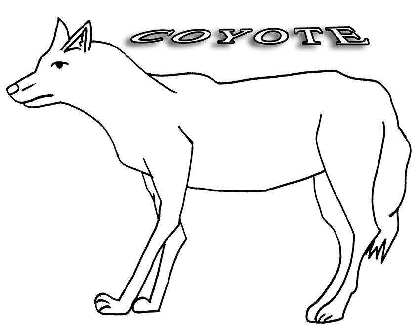 coyote coloring page free printable coyote coloring pages for kids coloring coyote page