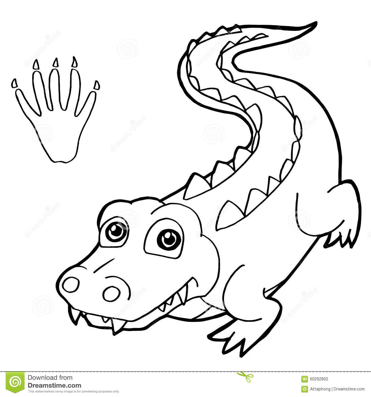 crocodile pictures to color alligator coloring pages to pictures color crocodile