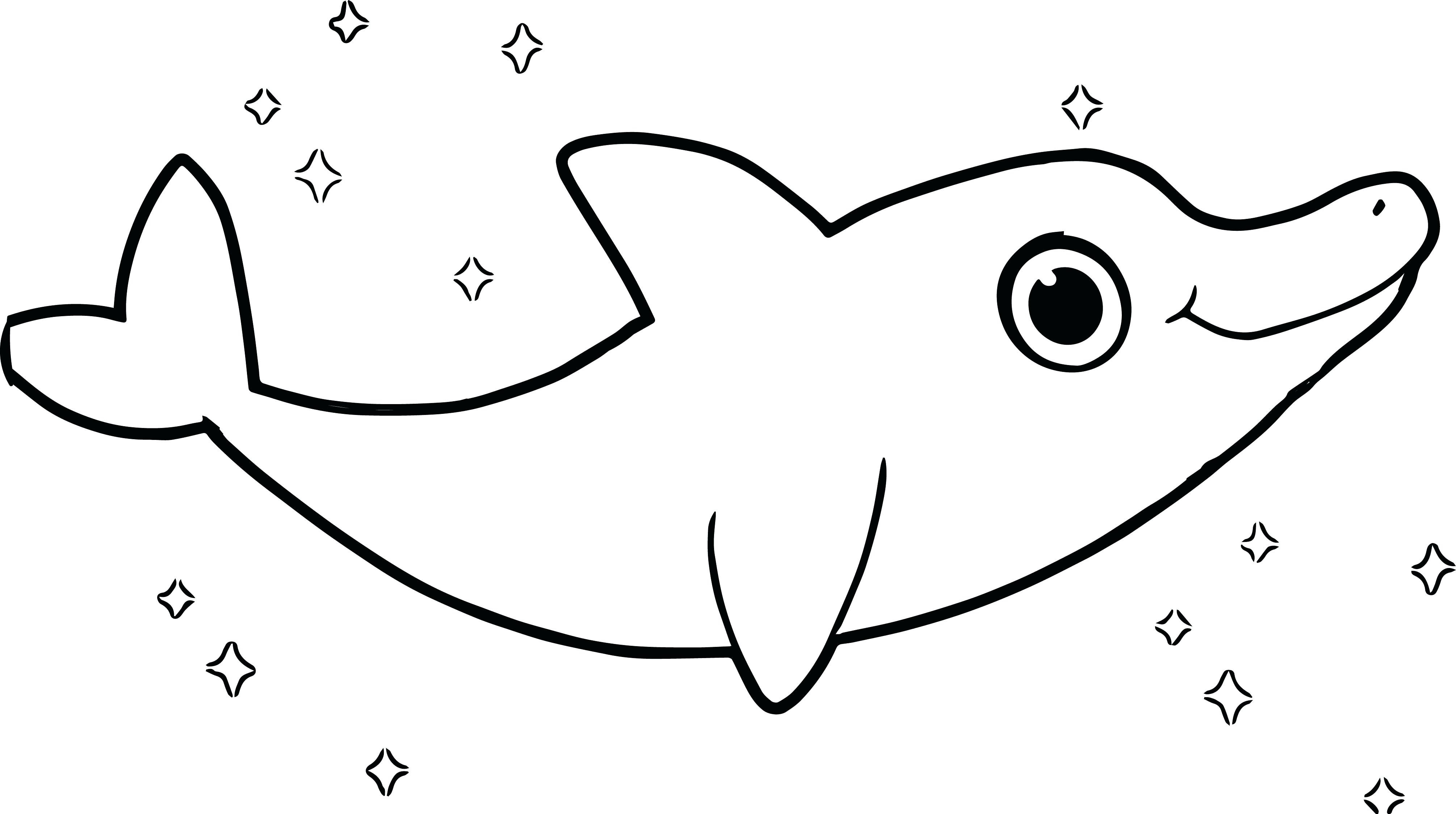 cute dolphin coloring pages clipart panda free clipart images dolphin pages cute coloring