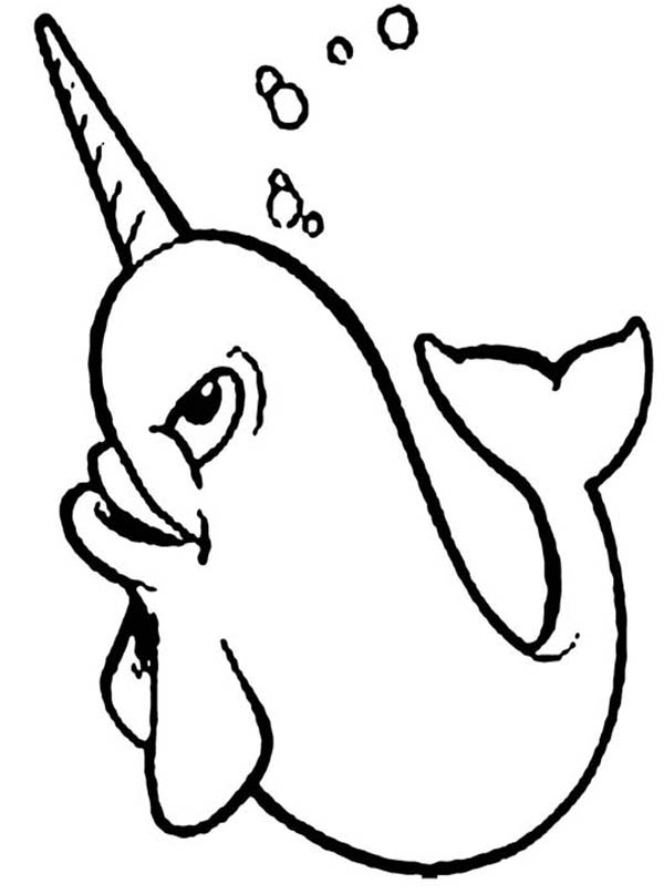 cute narwhal coloring page narwhal cartoon drawing at getdrawings free download narwhal page cute coloring