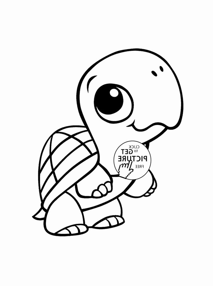 cute zoo coloring pages cute coloring pages of animals in 2020 zoo animal pages cute coloring zoo