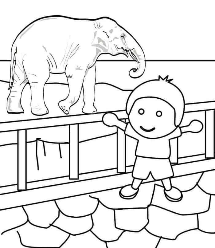cute zoo coloring pages printable zoo coloring pages for kids zoo cute coloring pages