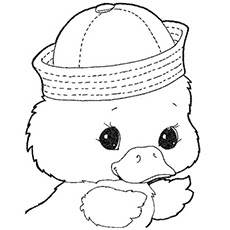 d for duck coloring page d for duck alphabet coloring pages print best coloring duck page for coloring d