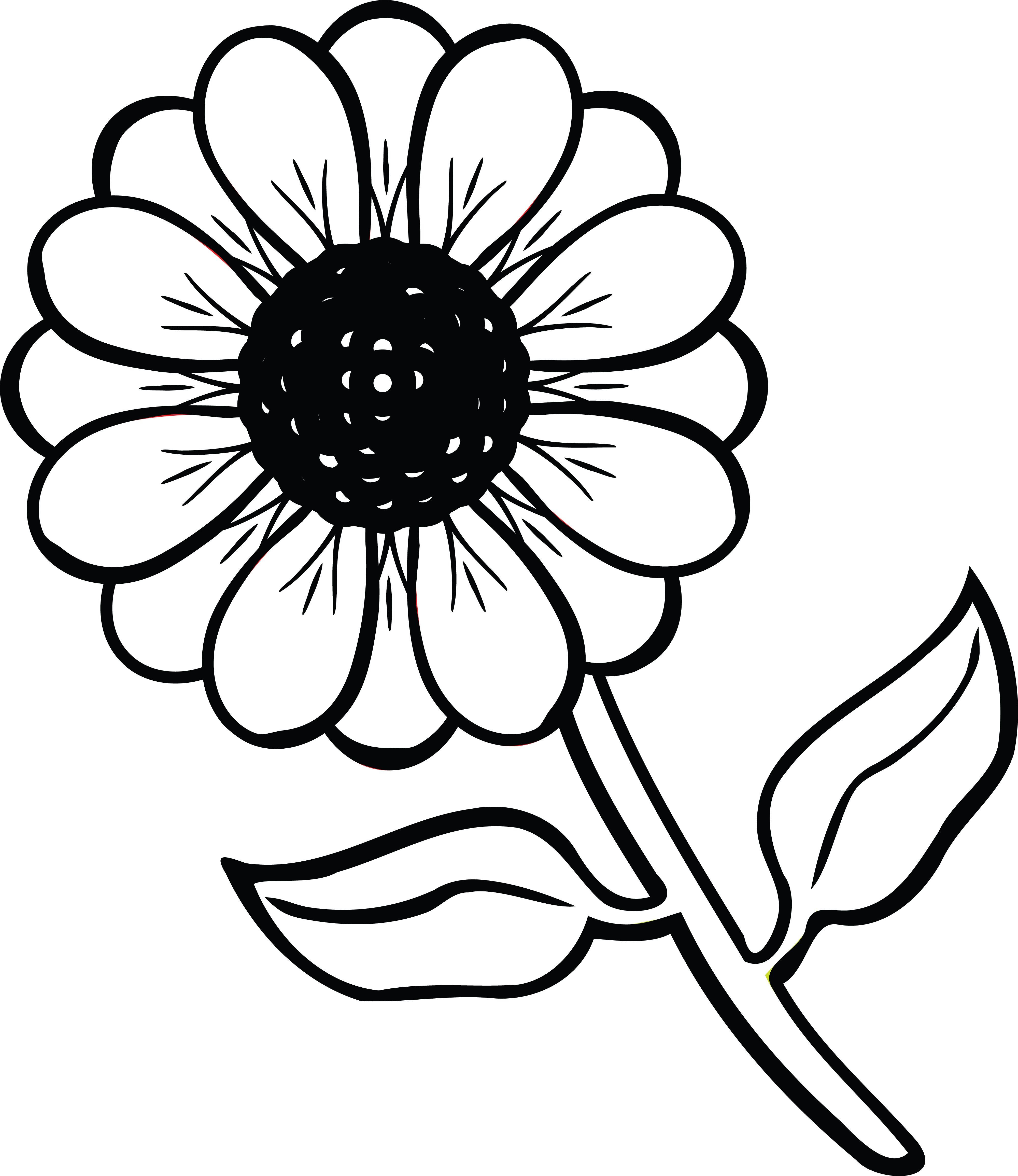 daisy flower cartoon pictures image result for daisy botanical drawing daisy drawing flower daisy cartoon pictures