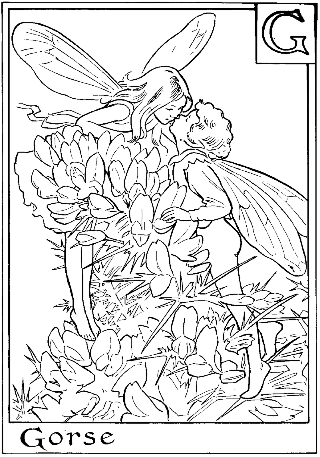 detailed beautiful fairy coloring pages fairy coloring pages for adults best coloring pages for kids fairy pages beautiful coloring detailed