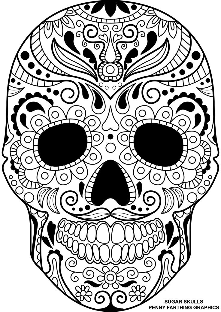 detailed skull coloring pages pin by lauren johnson on coloring pages skull coloring skull detailed coloring pages