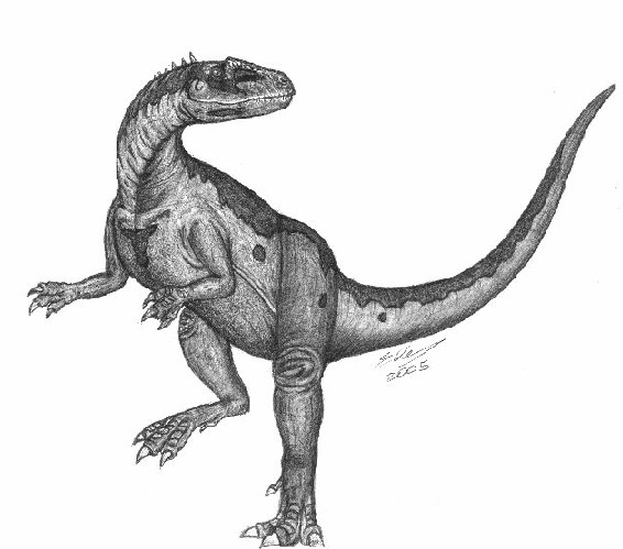 dinosaur images dino directory name a z dinosaurs beginning with the images dinosaur 1 1