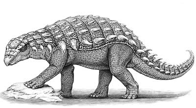 dinosaur images time dinosaurs from the late cretaceous period natural dinosaur images