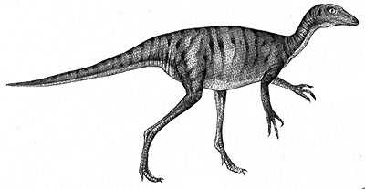 dinosaur images time dinosaurs from the late triassic period natural dinosaur images 1 1