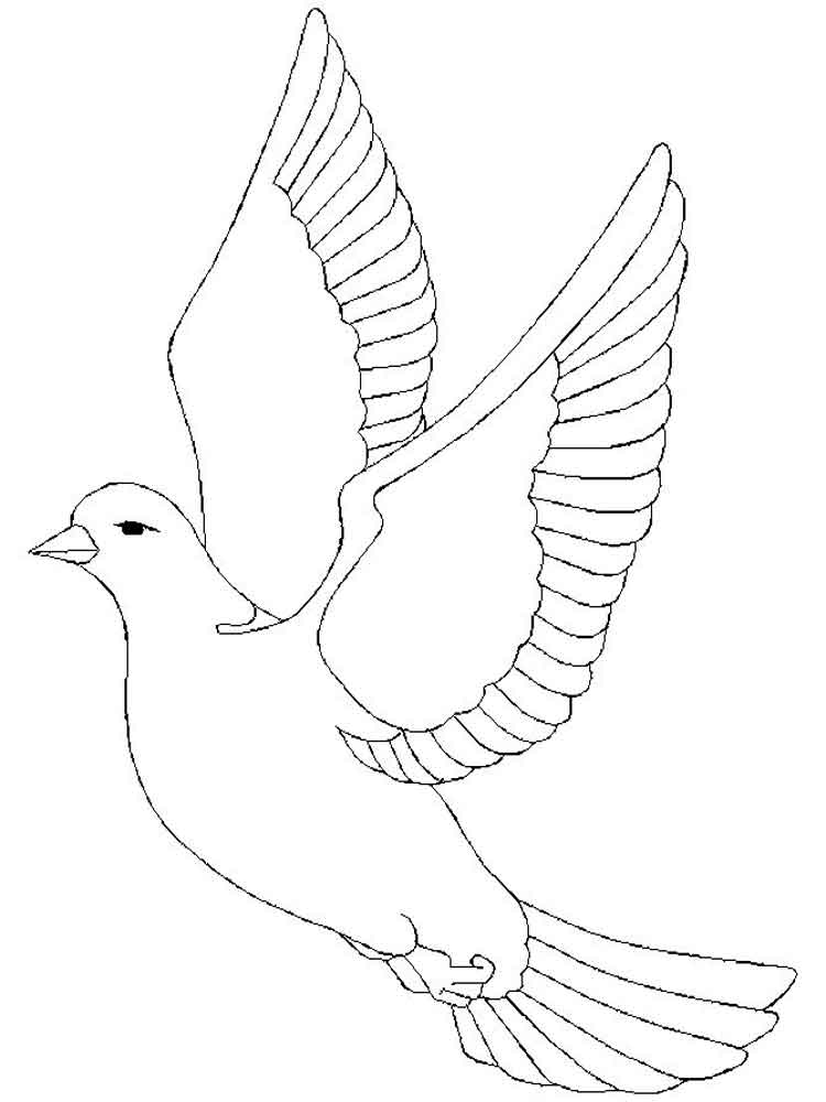 doves coloring pages dove coloring page at getcoloringscom free printable pages doves coloring