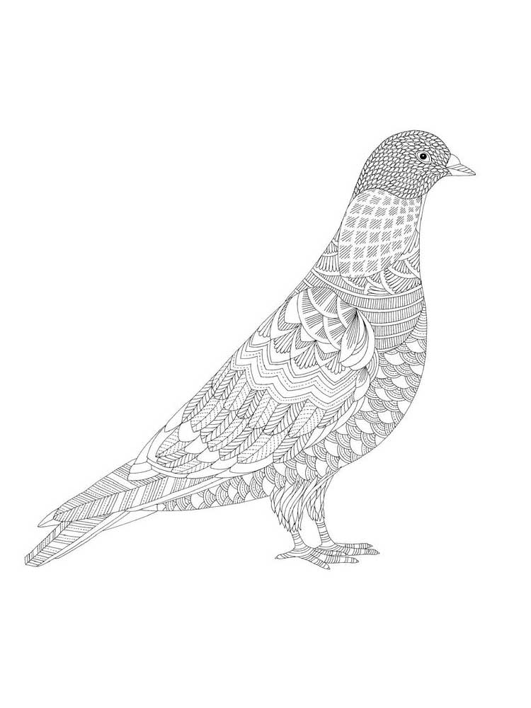 doves coloring pages dove coloring pages download and print dove coloring pages pages coloring doves